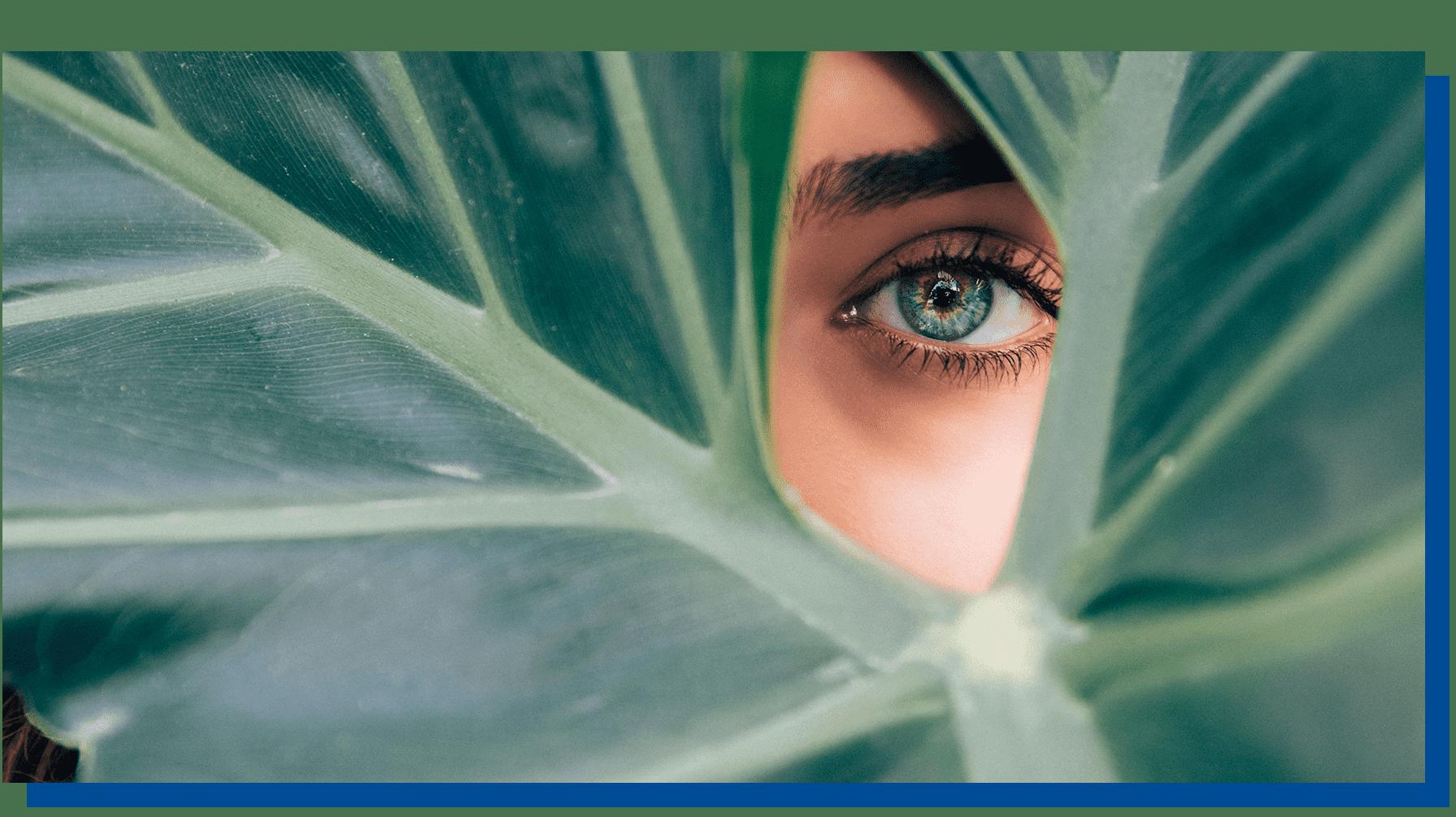 Eye behind leaf